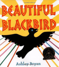 BeautifulBlackbird