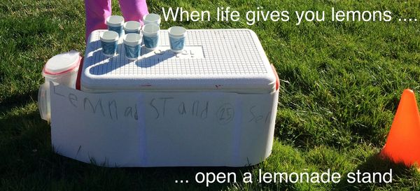 LemonadeStand2_Fotor