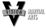 Vision-martial-arts