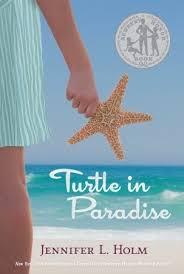 TurtleInParadise